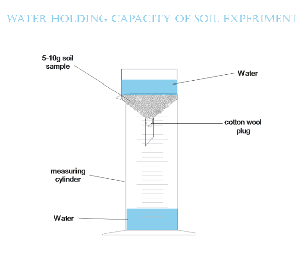 To Measure Water Holding Capacity of Soil