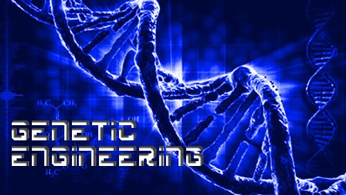 Genetic Engineering Exam Questions and Answers