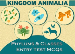 Kingdom Animalia Phylums and Classes Entry Test MCQs