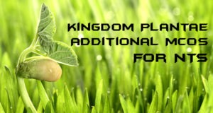 Kingdom Plantae Additional MCQs For NTS