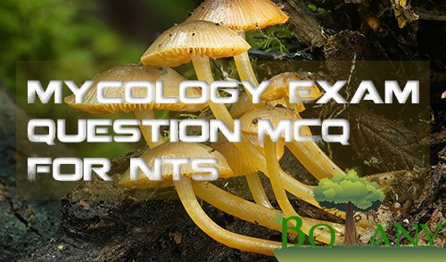 Online Mycology Course