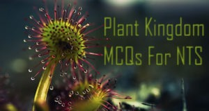 Plant Kingdom MCQs For NTS