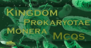Kingdom Prokaryotae Monera Mcqs For NTS Tests