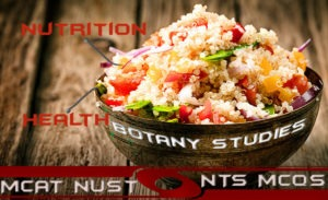 Mcqs of Nutrition With Answers
