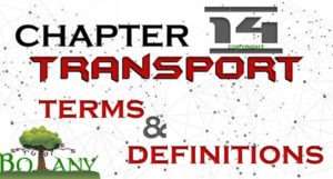 Chapter 14 Transport Important Terms