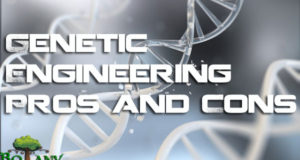 Genetic Engineering Pros and Cons